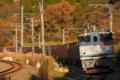 [成田線][酒々井][佐倉][96レ][EF65PF][新鶴見機関区][コンテナ貨物][貨物列車]酒々井-佐倉_96レ_EF65PF-2065号機(新鶴見)+コキ牽引
