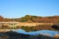 千葉県松戸市_21世紀の森と広場_千駄堀池