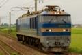 [日本海縦貫線][羽越本線][余目][北余目][4093レ][EF510][青後藤][富山機関区][単機][貨物列車]余目-北余目_単4093レ_EF510-501号機(富山)