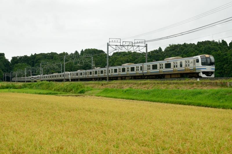 佐倉-物井_4386F_E217系快速