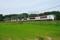 佐倉-物井_E259系特急成田エクスプレス30号