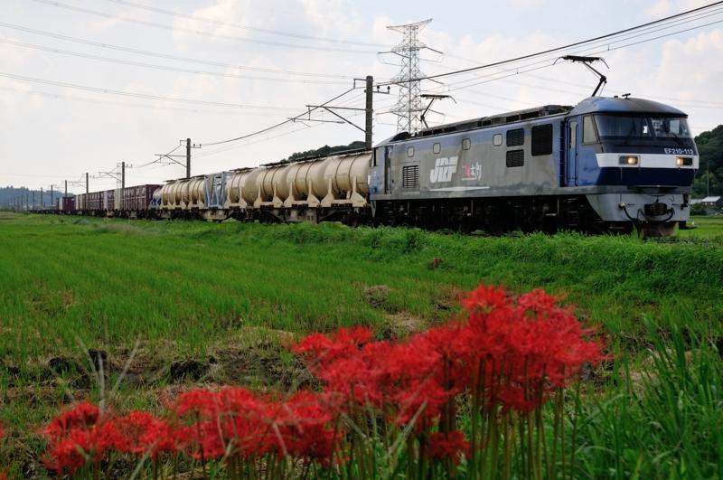 滑河-下総神崎_1093レ_EF210-112号機(新鶴見)+コキ15B