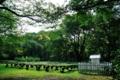 [青森県][弘前市][弘前城][弘前公園]菊の栽培と百葉箱