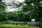菊の栽培と百葉箱