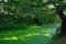 緑に染まる外濠