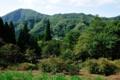 [秋田県][大館市][長走風穴高山植物群落][国指定天然記念物]遊歩道俯瞰_縫戸山方面