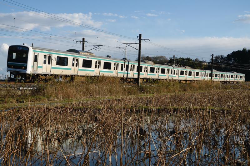 石岡-高浜_559M_E501系普通