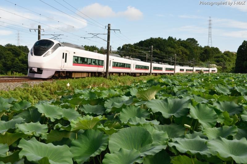 石岡-高浜_E657系特急ひたち17号