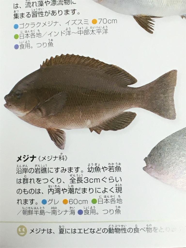 f:id:shinO:20200120200121j:image