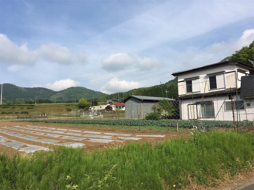 f:id:shin_kuroiwa:20170509235906j:image