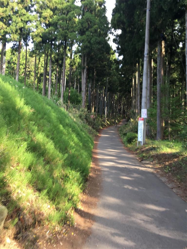 f:id:shin_kuroiwa:20170509235929j:image