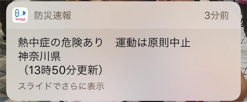 f:id:shin_kuroiwa:20180724132216j:image