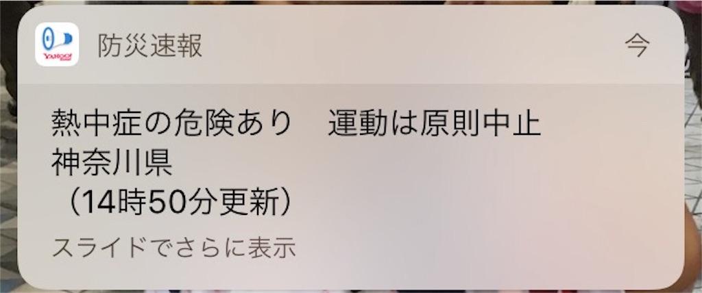 f:id:shin_kuroiwa:20180724132222j:image