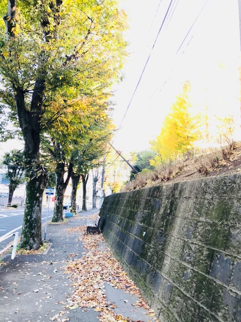 f:id:shinam:20171113131127j:image
