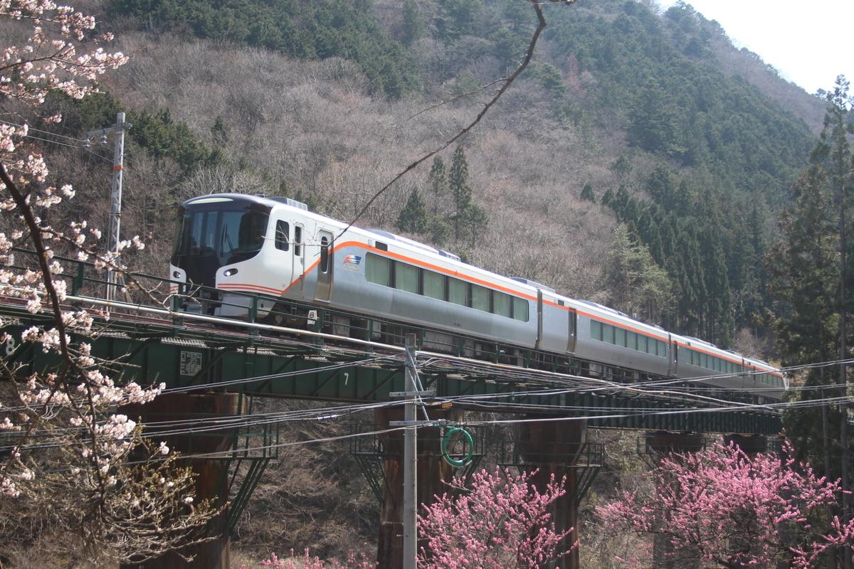f:id:shinano381:20200606183401j:plain