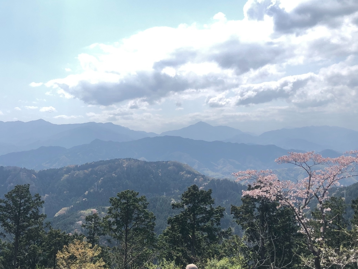 f:id:shinanoarai64:20210404152409j:plain