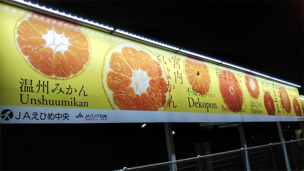 f:id:shinayakaniikiru:20180125182049j:image