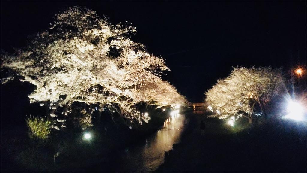 f:id:shinayakaniikiru:20180411214531j:image