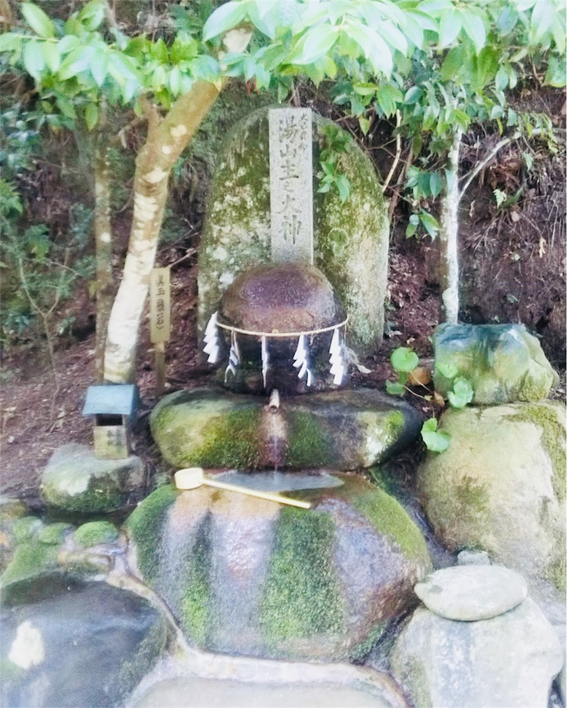 f:id:shinayakaniikiru:20180413223254j:image