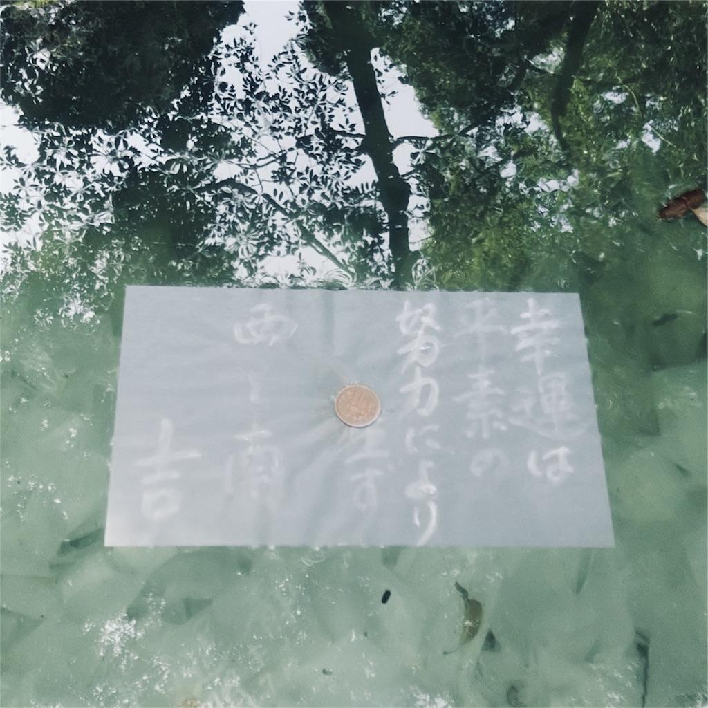 f:id:shinayakaniikiru:20180413223356j:image