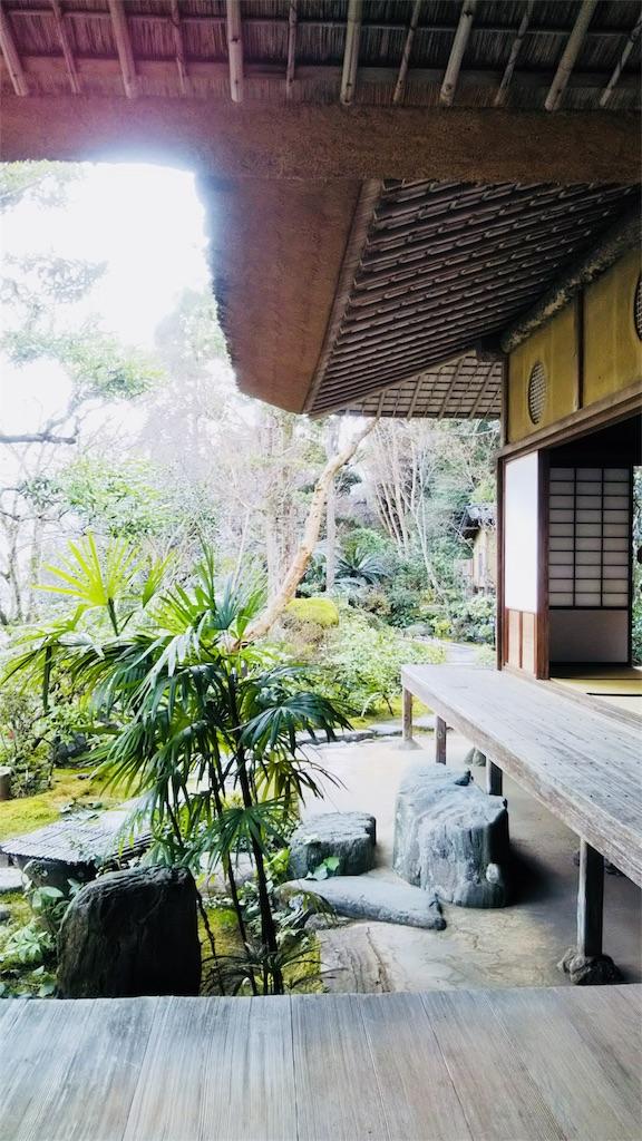 f:id:shinayakaniikiru:20180712122619j:image
