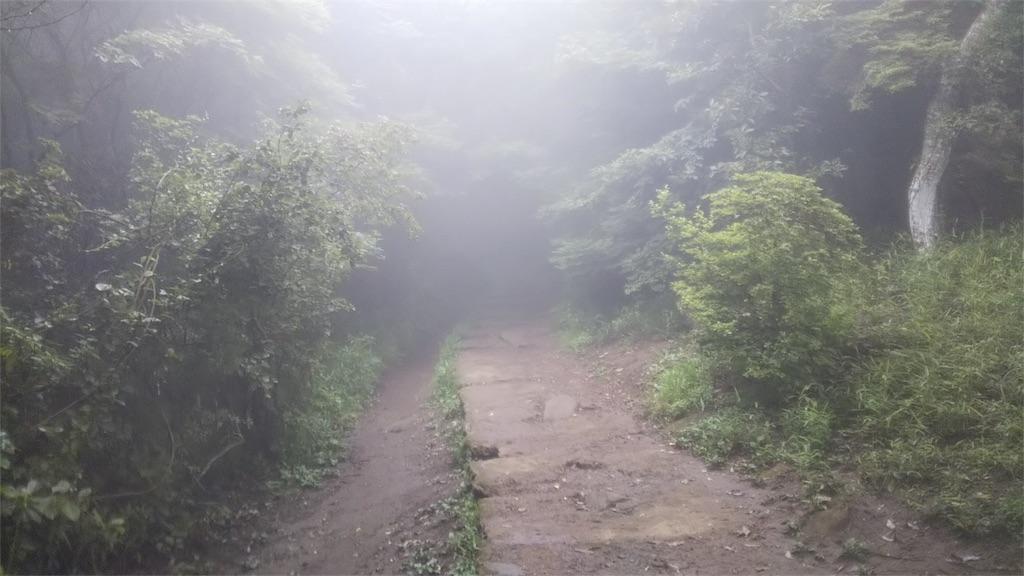 f:id:shinayakaniikiru:20180713091454j:image