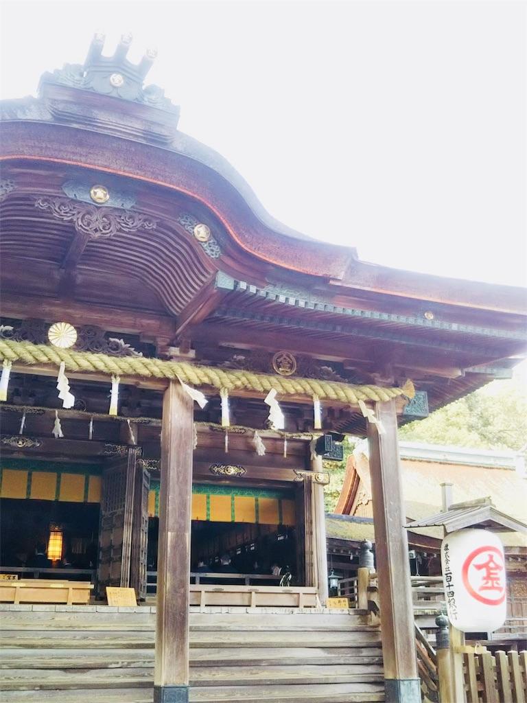 f:id:shinayakaniikiru:20181231190133j:image
