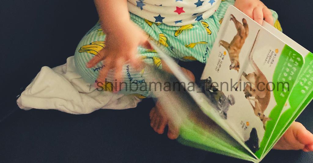 f:id:shinbamama-tenkin:20200606074714p:image