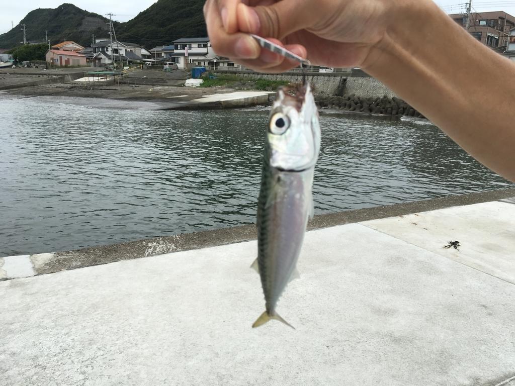 f:id:shinbashi-ol:20181010000412j:plain