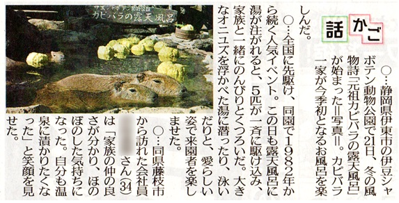 f:id:shinbun-kenkyuujo:20201122100237j:plain
