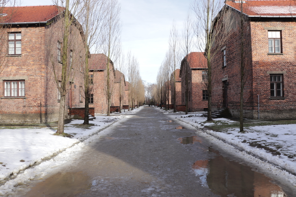 f:id:shinchan-netherlands-belgium:20190116203219j:plain
