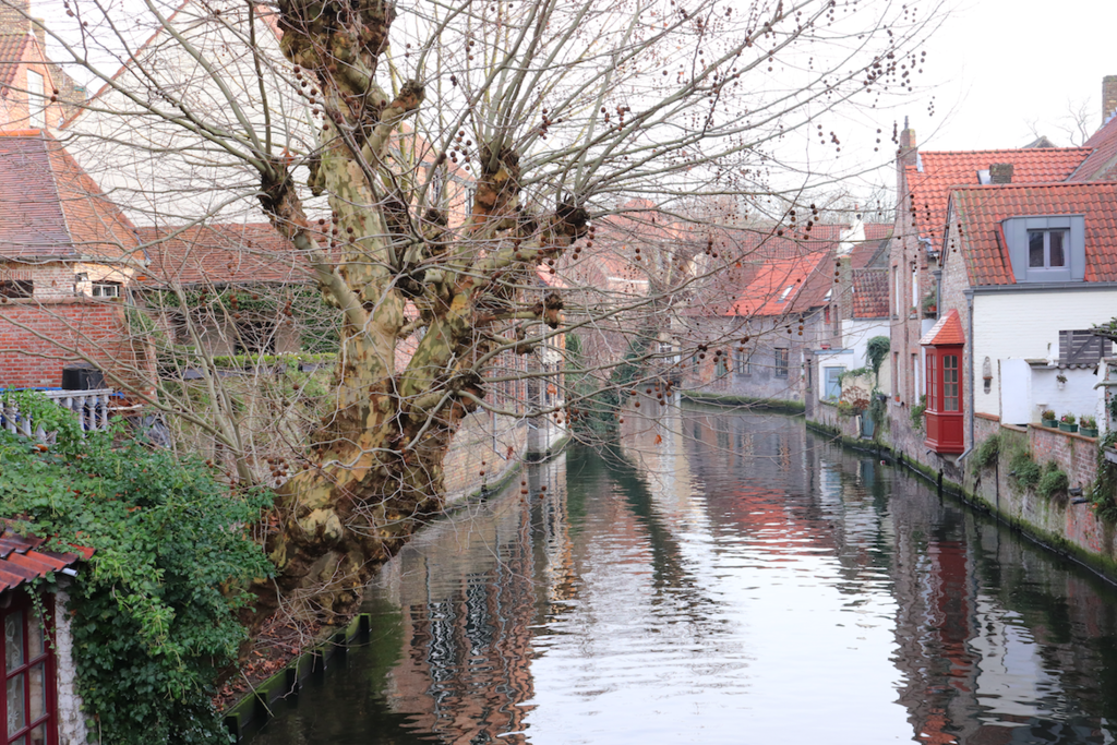 f:id:shinchan-netherlands-belgium:20190127223318p:plain