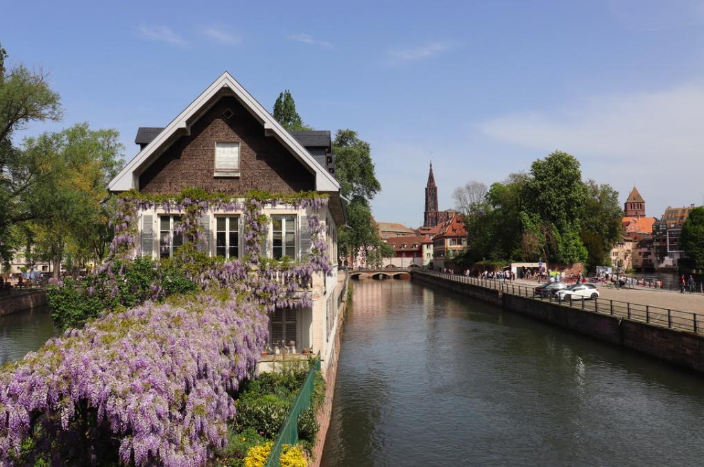 f:id:shinchan-netherlands-belgium:20190522002217p:plain