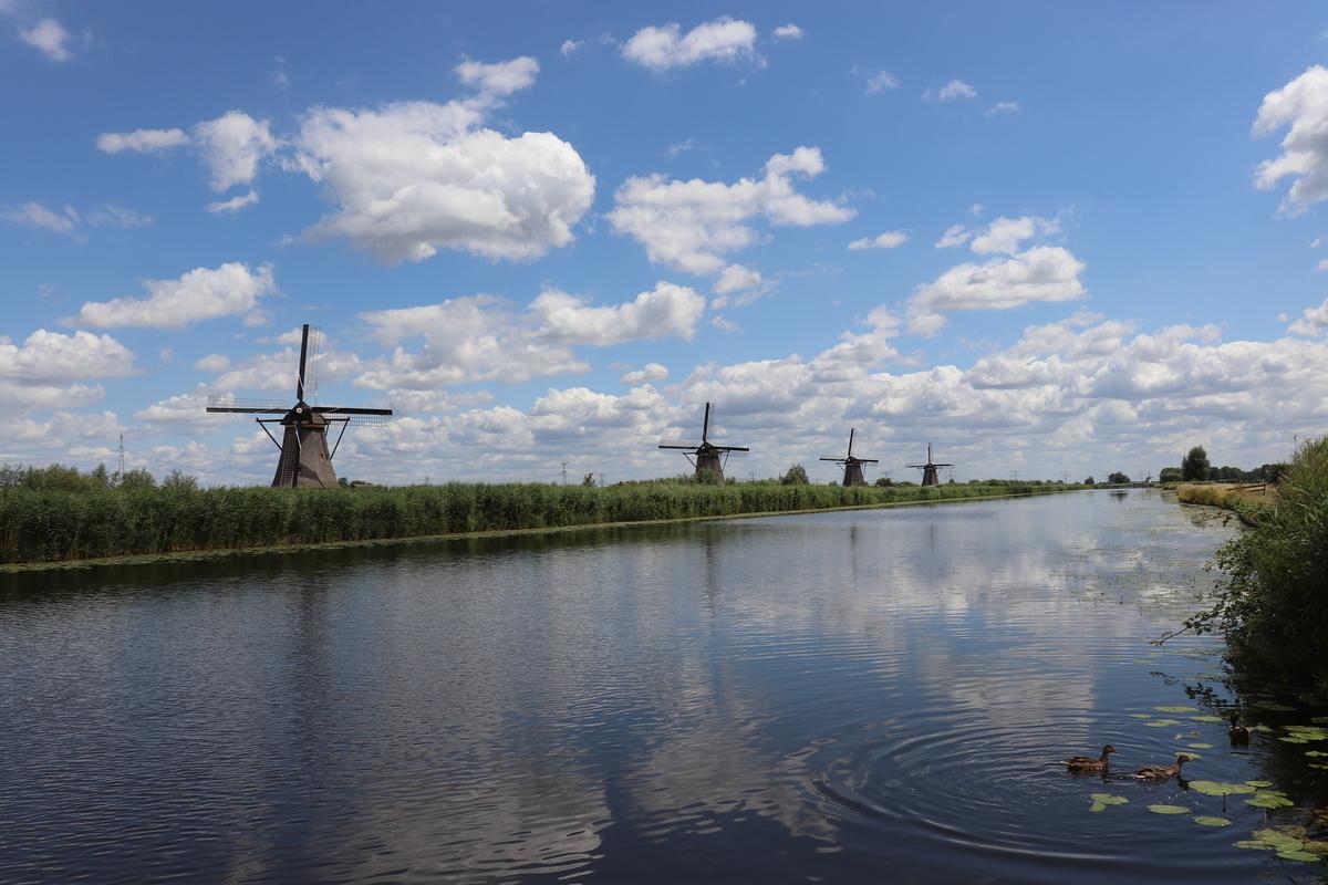 f:id:shinchan-netherlands-belgium:20190712223401j:plain
