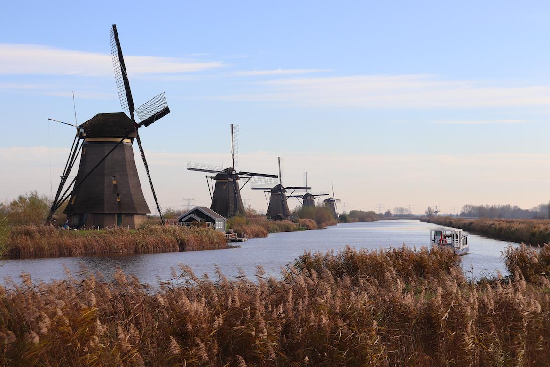 f:id:shinchan-netherlands-belgium:20191207214037p:plain