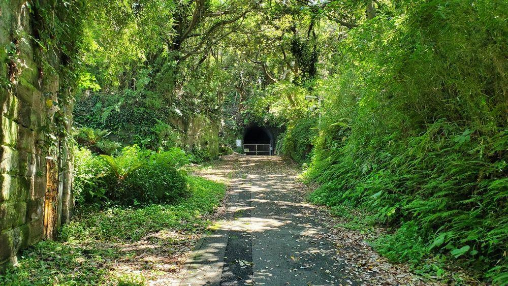 観音崎公園内の自然が多い場所
