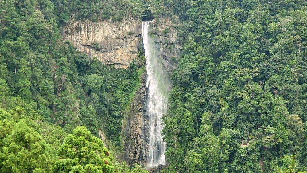 三重塔から見た那智の滝