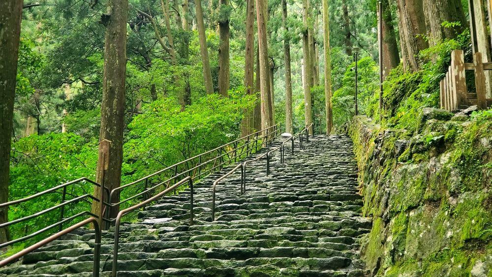 飛瀧神社の境内