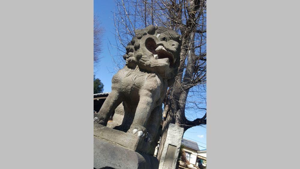 瀧野川八幡神社 狛犬