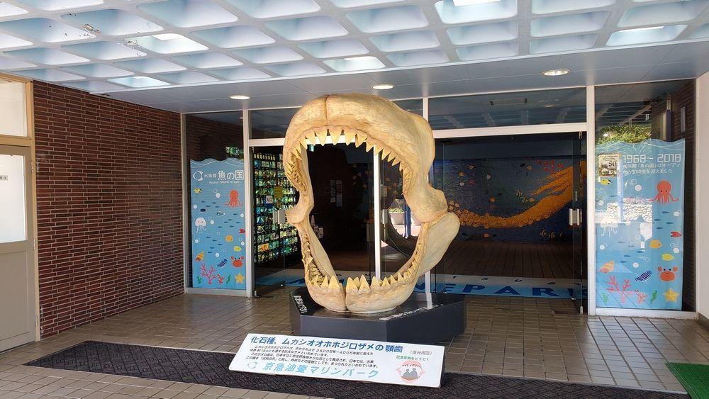 油壺マリンパーク 魚の国