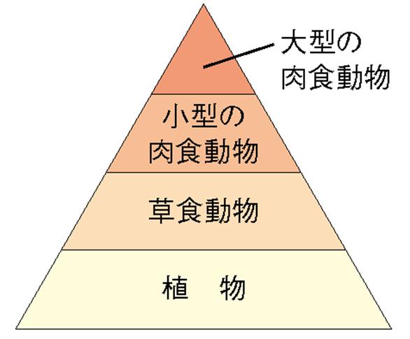 f:id:shinchouhikui_joshi:20161224152215p:plain