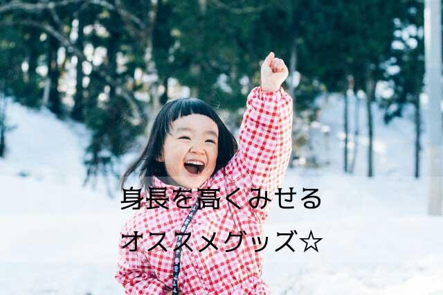 f:id:shinchouhikui_joshi:20170207205023j:plain