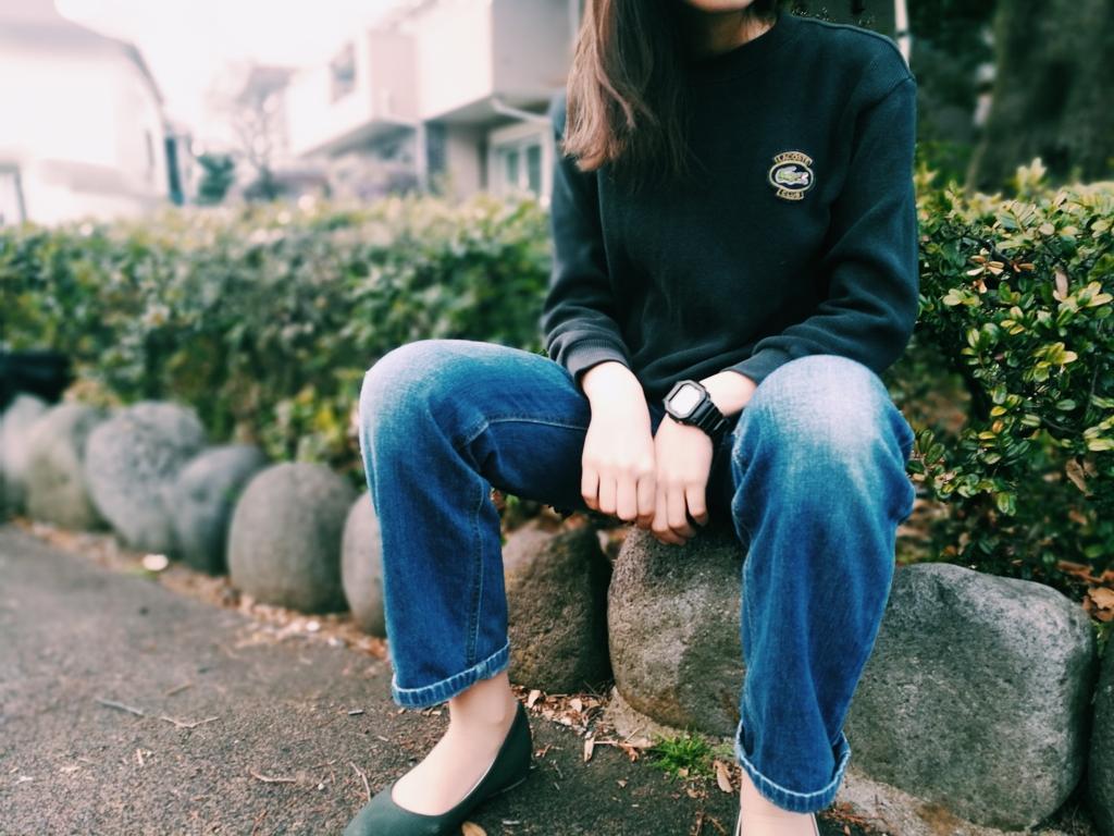 f:id:shinchouhikui_joshi:20170309182427j:plain