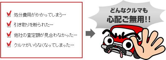 f:id:shineijapan:20170925235129j:plain