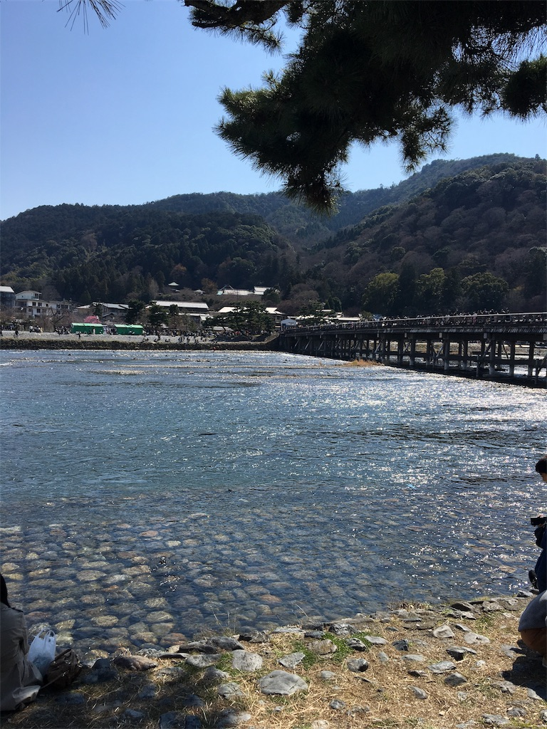 f:id:shingo-sakuragi:20170428205944j:image