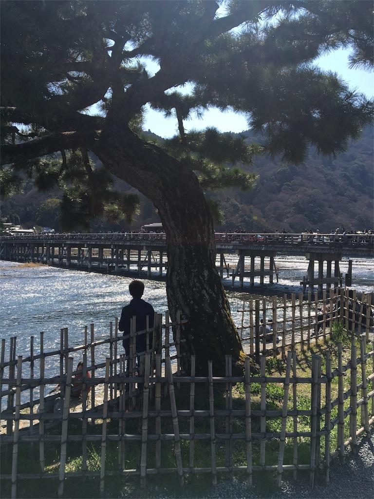 f:id:shingo-sakuragi:20170428210548j:image