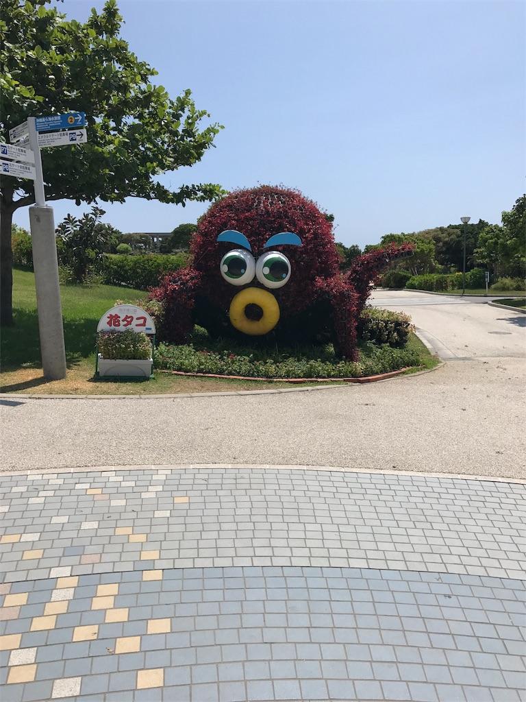 f:id:shingo-sakuragi:20170809224449j:image