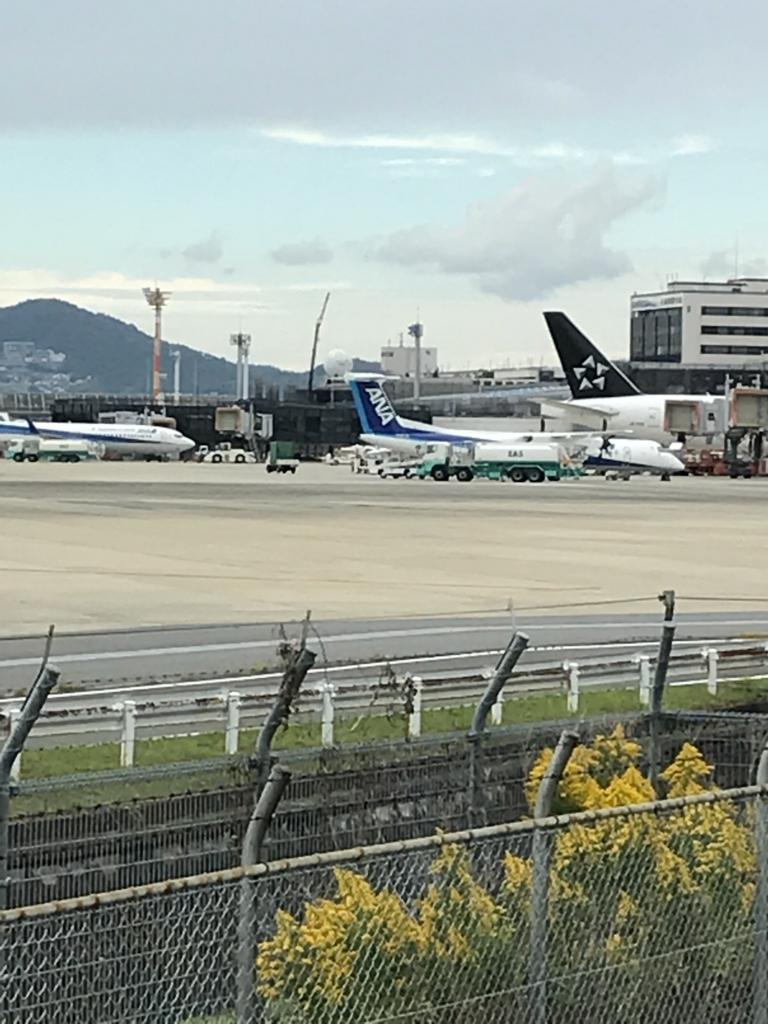 f:id:shingo-sakuragi:20171015031526j:plain