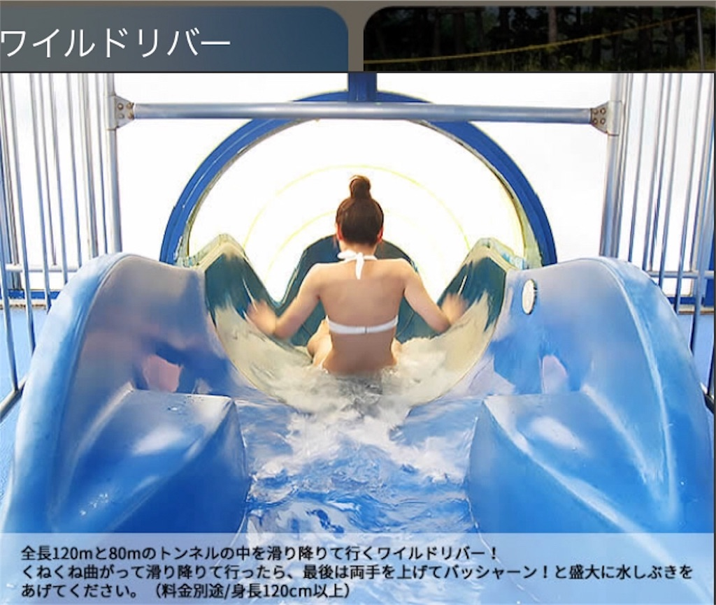 f:id:shingo-sakuragi:20180131125806j:image