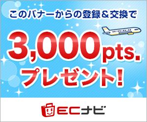 f:id:shingo-sakuragi:20180208000542p:plain